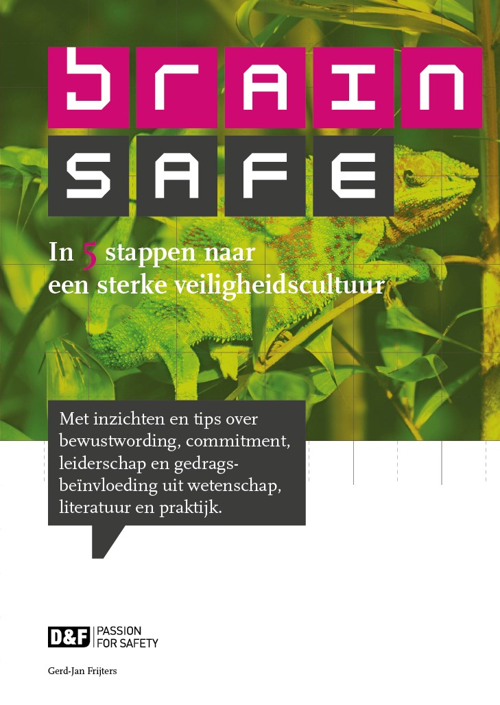 Afbeelding Brainsafe ® door Gerd-Jan Frijters